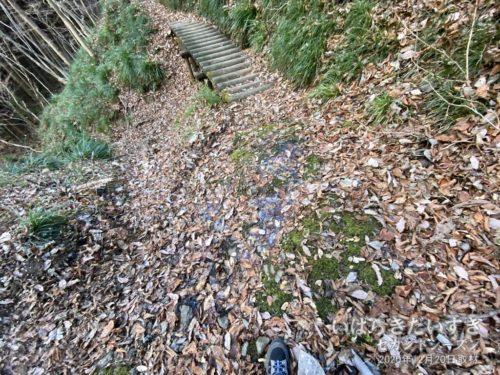 落ち葉の下が岩肌で、凍っていました。