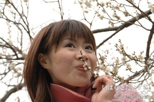 モデルさん、梅の花にキス。