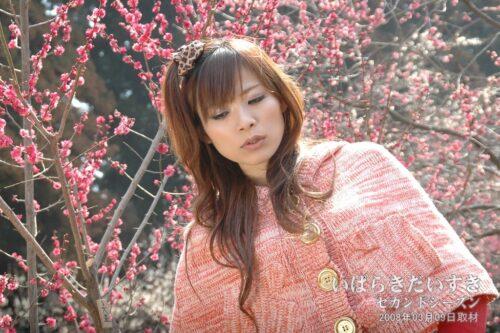 モデルさん (2008年) / 水戸の梅まつり