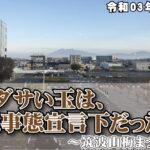 まだダサい玉は、緊急事態宣言下だった~筑波山梅まつり開催