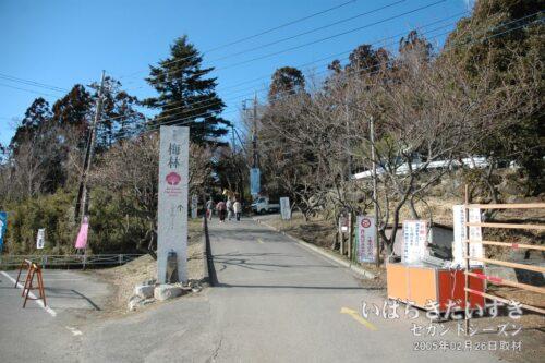 筑波山 梅林 入口