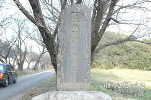 茨城百景 069 化蘇沼稲荷神社