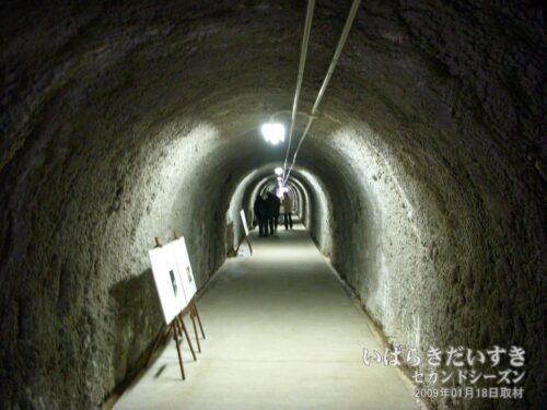 ウミウ捕獲場へ続くトンネル。