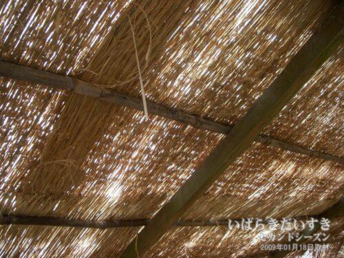 ウミウ捕獲場 / 丸太とコモで作られている。