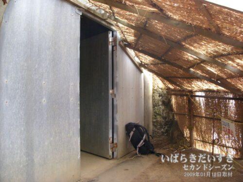 ウミウ捕獲場 / トンネルへの出入り口。