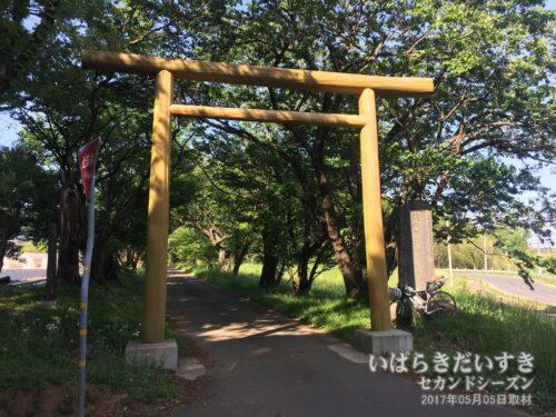 化蘇沼稲荷神社 参拝道入口の鳥居が新調されていた。(2017年05月撮影)