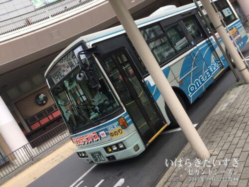 JR水戸駅南口ペデストリアンデッキ下に、バス乗り場。