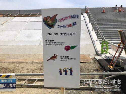子どもいきいき自然体験フィールド100選<br>No.63 大北川河口
