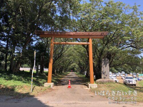 新調された化蘇沼稲荷神社 鳥居。(2019年撮影)