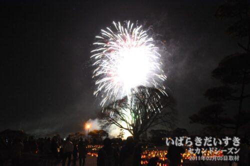 夜梅祭(2011年03月05日) / 震災一週間前