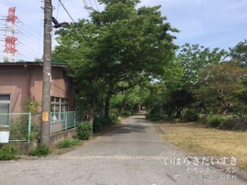 埼玉県さいたま市岩槻区の某幼稚園。