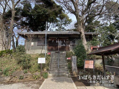 赤山日枝神社 / 築山は堀を掘ったときの土を利用したと伝えられる。